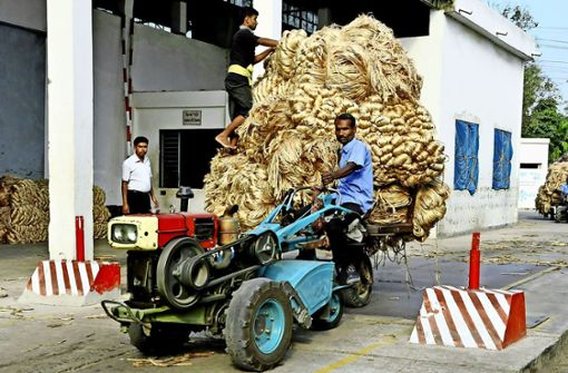 Jute-Transport in Bangladesh. Foto: Intertrop